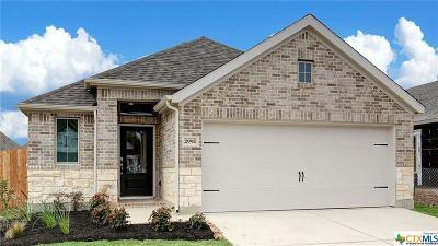 Seguin Single Family Home For Sale: 2992 Grove Terrace
