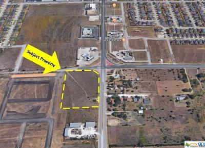Killeen Commercial For Sale: 4801 S Clear Creek Road
