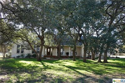 Salado Single Family Home For Sale: 1168 Mission Trail