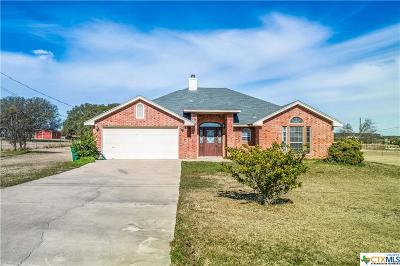 Kempner Single Family Home For Sale: 130 County Road 4889