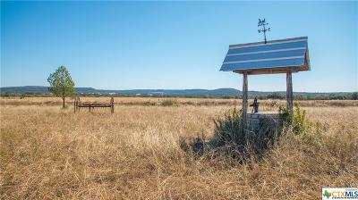 Burnet County Residential Lots & Land For Sale: 5725 Cr 340