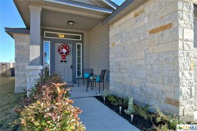 New Braunfels Single Family Home For Sale: 2293 Lighthouse