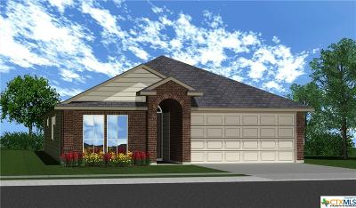 Temple TX Single Family Home For Sale: $164,430