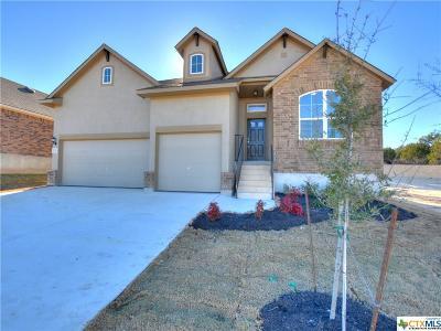 San Antonio Single Family Home For Sale: 1330 Taubenfeld