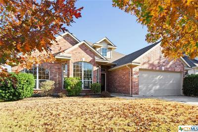 Kyle TX Single Family Home For Sale: $245,000