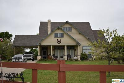 Bell County Single Family Home For Sale: 1004 Willow Springs