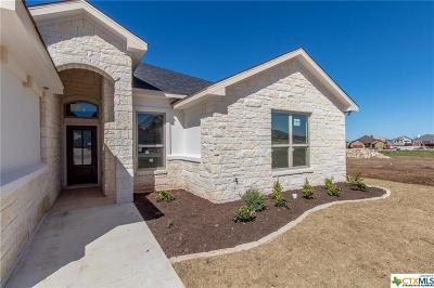 Williamson County Single Family Home For Sale: 337 Western Sky