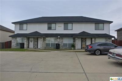 Killeen Multi Family Home For Sale: 4506 Alan Kent Drive #A-D
