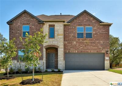 San Marcos Single Family Home For Sale: 103 Mary Max Cove