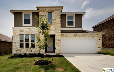 San Marcos TX Single Family Home For Sale: $282,990