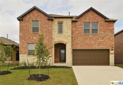 San Marcos TX Single Family Home For Sale: $269,595