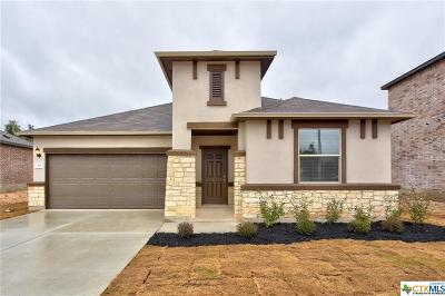 San Marcos Single Family Home For Sale: 361 Mary Max Circle