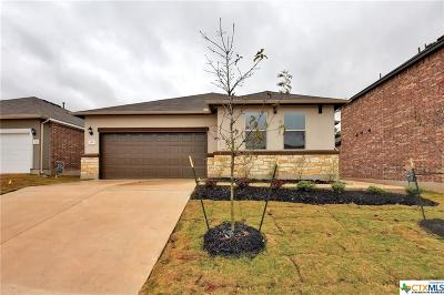 San Marcos TX Single Family Home For Sale: $240,695