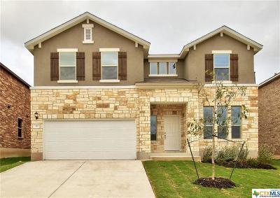 San Marcos TX Single Family Home For Sale: $271,990