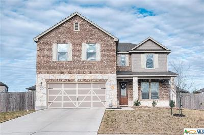Manor Single Family Home For Sale: 12604 Valor Court