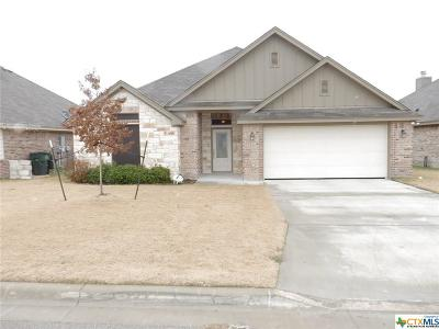 Bell County Single Family Home For Sale: 2529 Nolan Creek