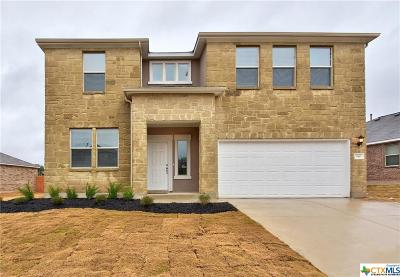 San Marcos TX Single Family Home For Sale: $269,990