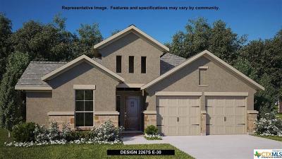San Antonio Single Family Home For Sale: 2315 Elysian Trail