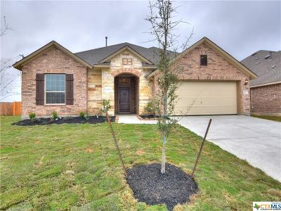 New Braunfels Single Family Home For Sale: 650 Ridgeglen Drive