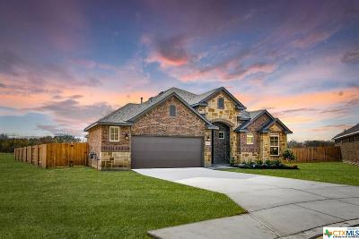New Braunfels TX Single Family Home For Sale: $369,990