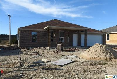 Killeen Single Family Home For Sale: 6909 Oliver Loving Drive
