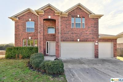 Williamson County Single Family Home For Sale: 4508 Three Arrows
