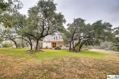 Comal County Single Family Home For Sale: 230 River Chase