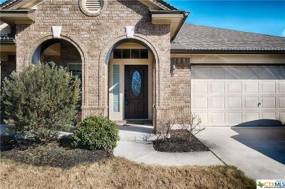 Round Rock TX Single Family Home For Sale: $269,900