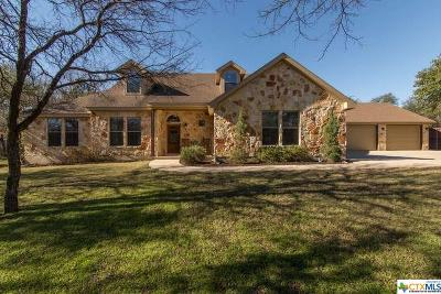 Williamson County Single Family Home For Sale: 205 Buoy