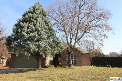 Belton Single Family Home For Sale: 3112 Red Oak Drive
