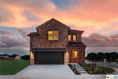 Cedar Park TX Single Family Home For Sale: $371,310