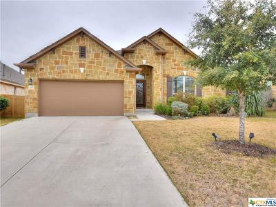 Cedar Park Single Family Home For Sale: 3105 Herradura Drive