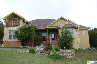 New Braunfels TX Single Family Home For Sale: $824,900