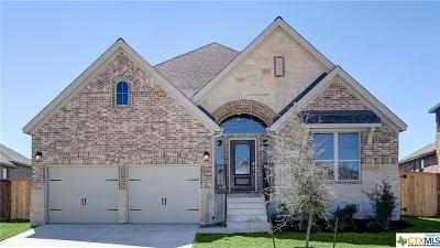 Boerne Single Family Home For Sale: 9780 Innes Place