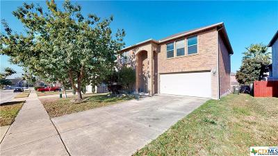 Cibolo Single Family Home For Sale: 132 Springtree Hollow