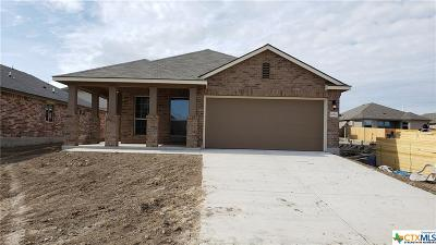 Temple TX Single Family Home For Sale: $162,945