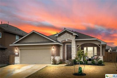 San Marcos TX Single Family Home For Sale: $329,000