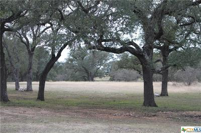 New Braunfels Residential Lots & Land For Sale: 288 Red Hawk Trail