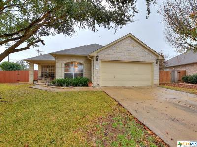 Round Rock Single Family Home For Sale: 4313 Rock Hill