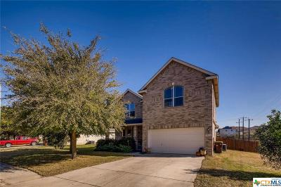 San Antonio Single Family Home For Sale: 3206 Sunday Song