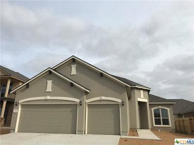 Single Family Home For Sale: 1725 Fall View
