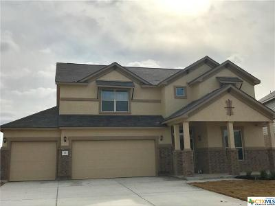 Single Family Home For Sale: 1382 Shadow Rock