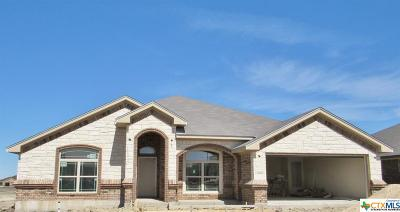 Bell County Single Family Home For Sale: 5909 Verde
