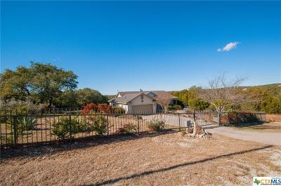 Canyon Lake Single Family Home For Sale: 920 Cougar Drive