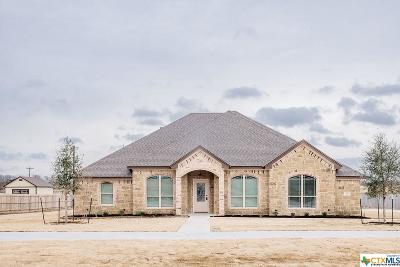 McLennan County Single Family Home For Sale: 123 Ralynn Drive