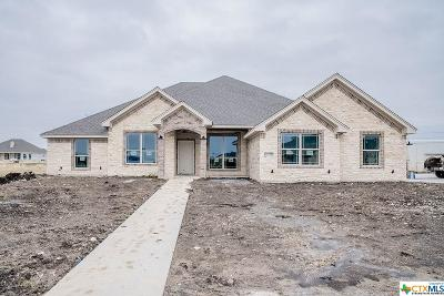 Bell County Single Family Home For Sale: 4307 Big Brooke Drive
