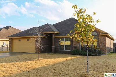 Harker Heights Single Family Home For Sale: 1017 Chaucer Lane