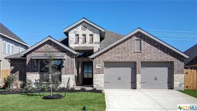 Seguin Single Family Home For Sale: 2973 High Meadow Street