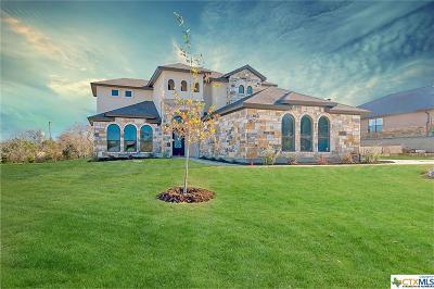 Salado Single Family Home For Sale: 1024 Park View Drive