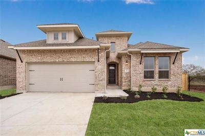 San Marcos Single Family Home For Sale: 117 Tulip Garden Trail